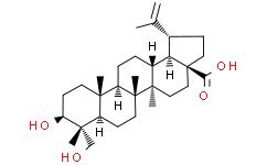 23-羟基白桦酸