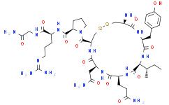 果胶酶3S
