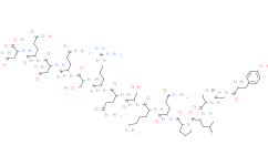 Myelin Basic Protein (68-82), guinea pig