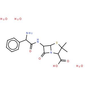 氨芐青霉素三水酸