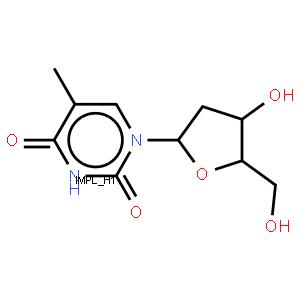寡聚脱氧胸苷纤维素