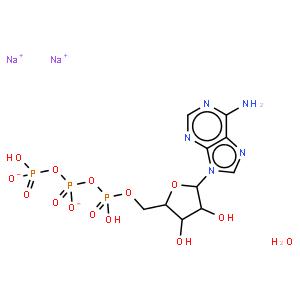 5-腺苷三磷酸二钠盐