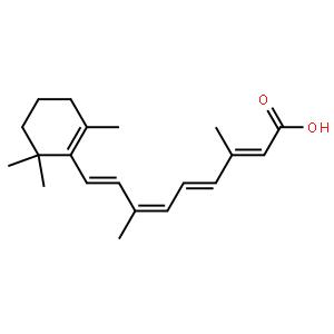 胰酶粉1:4000