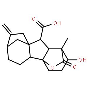 赤霉素GA4