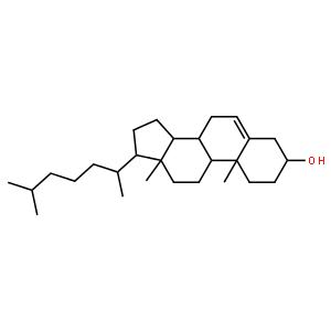 胆固醇酯酶(猪胰)