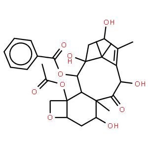 10-Deacetylbaccatin III (10-DAB III)