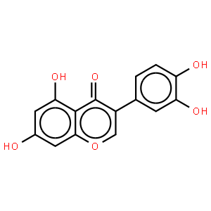 槲皮素 二水合物