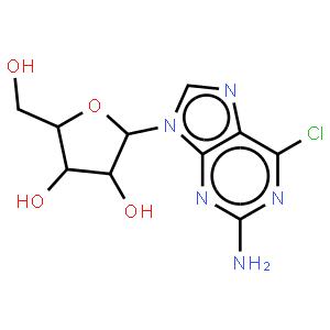 2-氨基-6-氯嘌呤核苷
