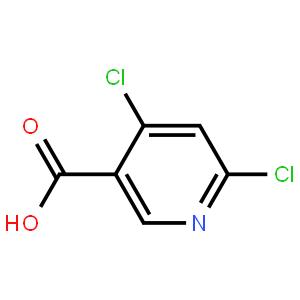4,6-二氯烟酸