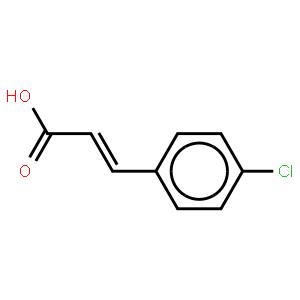 反-对氯肉桂酸