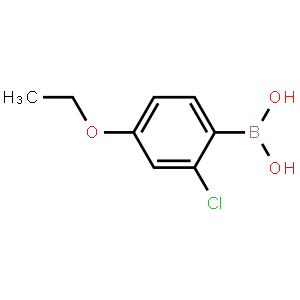 2-氯-4-乙氧基苯硼酸