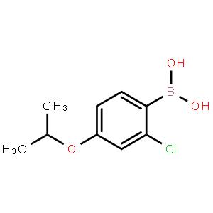 2-氯-4-异丙基氧基苯硼酸