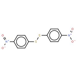 DEAE 纤维素 DE-52