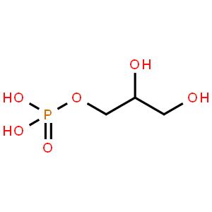 甘油-3-磷酸氧化酶