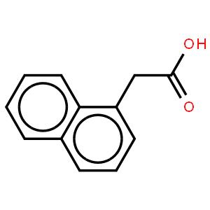 Ethyl 1-(3-pyridylmethyl)piperidine-4-carboxylate , 97%