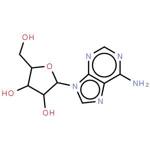 Adenosine 5'-triphosphate disodium salt (ATP)