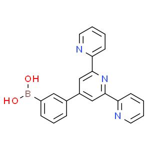 4'-(3-硼酸基)-2,2':6',2''三联吡啶