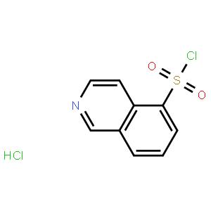 异喹啉-5-磺酰氯盐酸盐