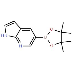 7-氮杂吲哚-5-硼酸频哪醇酯