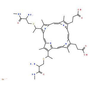 细胞色素C 来源于牛
