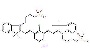 胶原蛋白I型 来源于大鼠尾