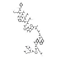 Neuromedin U (rat)