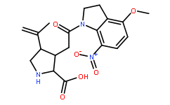 MNI caged kainic acid