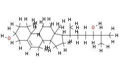 24(R)-hydroxy Cholesterol