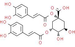 1,5-Dicaffeoylquinic acid