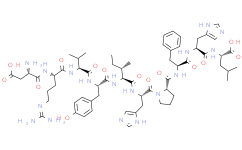 Angiotensin I (human, mouse, rat)