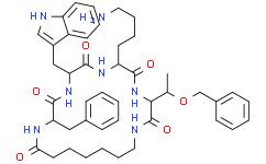 Cyclosomatostatin