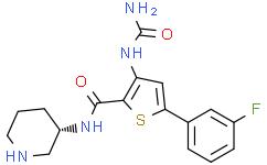 3-[(氨基羰基)氨基]-5-(3-氟苯基)-N-(3S)-3-哌啶基-2-噻吩羧胺